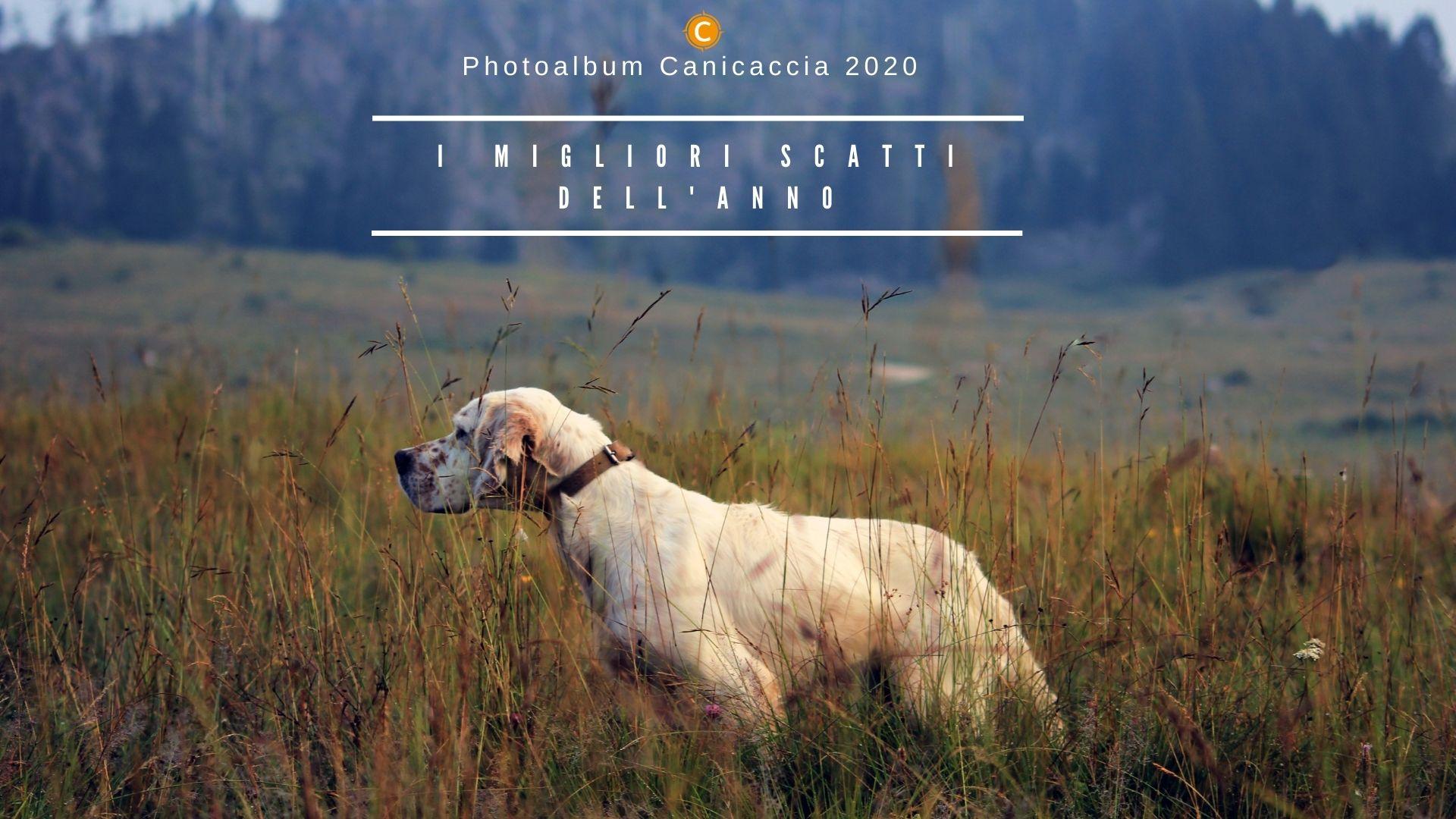 Photoalbum 2020