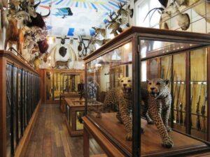 Musei di Caccia